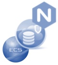 ECS and Nginx LB and CloudArray