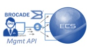 ECS management API access via vTM